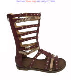 Gladiator Sandals Chaussures Strappy Zipper Retour