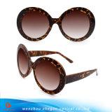 2017 óculos de sol de tamanho grande da venda quente