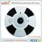Macchina fotografica panoramica dell'interno larga del IP Fisheye del CCTV di vista 20m Coms