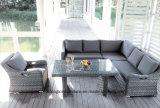 Loisirs 2*2 Textilene extérieurs et de jardin d'utilisation et sofa imperméable à l'eau de tissu (TG-6101)