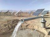 농장, 홈 사용 및 샘을%s 태양 제트기 펌프/1개의 HP 무브러시 가격 태양 수도 펌프