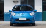 Piccola automobile elettrica di buona qualità con l'alta velocità