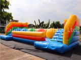 Aufblasbares Sport-Spiel/aufblasbare aufprallende Kugel /Inflatable, das Matte auf Verkauf springt