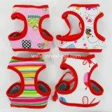 De Uitrusting van de Hond van de Leibanden van het Lood van de Huisdieren van de Levering van het Product van het Huisdier van China van multi-kleuren