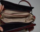 Ss18 Handtassen van de Dames van de Verkoop van het Leer van de Manier de Hete (ZXK1674)