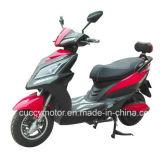 Scooter électrique adulte neuf de la qualité 1000W DEL (LX)