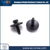 Custom noir atypique de la vis et écrous de boulon de fixation combinés