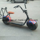 1000W電気ゴルフカートのセリウムの承認E8