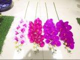 Fiori artificiali dell'orchidea di farfalla 123cm Gu-D70151