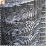 電流を通された溶接された網か正方形の金網