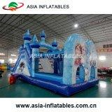 子供のためのプールが付いている巨大で膨脹可能な水スライド