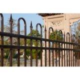 Clôture en acier galvanisée décorative industrielle résidentielle élégante personnalisée