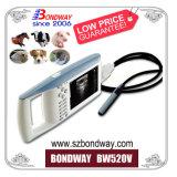 Equipo veterinario portátil de ultrasonido para uso veterinario, Veterinario Ultrasonido