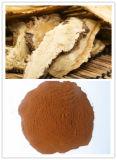 Freies Beispielangelika Sinensis Wurzel-Auszug-Puder, 1% Ligustilide