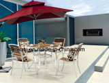 Outdoor/guards/Patio/Rattan/Aluminum & Polywood Table HS6316dt