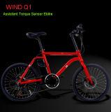 36V 250Wフランスの補助トルクセンサーの電気バイクの自転車