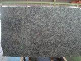 Оливер зеленый гранитных блоков&плитки гранитные полы&Walling