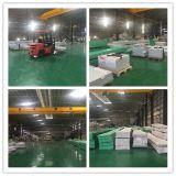 Groene Blad van het Dakwerk Bayer van 100% het Maagdelijke Polycarbonaat In reliëf gemaakte voor Serre