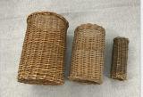 Túnel hecho a mano natural y apuesto del sauce del animal doméstico (BC-WT1001)