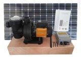 Wasser-Pumpen-Sonnensystem-Swimmingpool-Pumpe Gleichstrom-72V