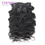 Clip al por mayor en productos sin procesar del pelo humano de las extensiones del pelo