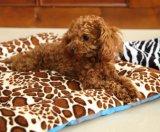 Cuatro estilos de estampado leopardo estera del animal doméstico