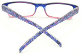 R17015 고아한 Hotsale 작풍 확대경은, 남녀 공통 패턴 안경알을 읽었다