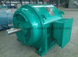 Motor de alta tensão Jr158-8-380kw-6kv/10kv do moinho de esfera do motor do anel deslizante de rotor de ferida da série do júnior