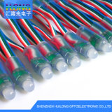 Christmas Light 12mm IP65 IC To control RGB LED Pixel Light