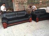 Ledernes Sofa-Büro-Sofa (FECLJ119)