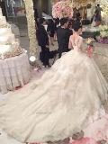 スコップ首の長袖のアップリケの夜会服のカテドラルのトレインのウェディングドレス(夢100014)