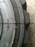 China-Gummireifen-Fertigung-Preis-Schiene-Steuern gute Laufwerk-Gummireifen 10-16.5 12-16.5 14-17.5 15-19.5 Loda die Marke Reifen für Verkauf