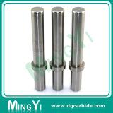 Carboneto de tungstênio padrão Rod de Dayton e perfurador