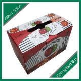 Geschenk, das Apple-Frucht-Karton-Kasten-Äpfel verpackt