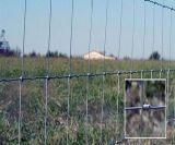 Por inmersión en caliente Galvnized Fence Farm / cerca de alambre de oveja