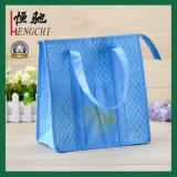 Non-Woven Picnic Lunch Cool Bag pour étudiant scolaire