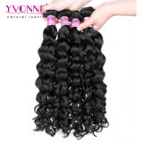 Nova chegada cabelos crespos italiano Virgem malaio de cabelo humano