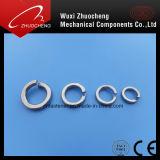 스테인리스 Steel304 316 봄 세탁기 또는 자물쇠 세탁기 DIN127b