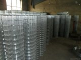 1 pollice rete metallica saldata galvanizzata & PVC ricoperta di 2X2