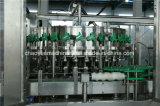 La linea di produzione automatica bevande gassose dentro può