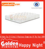 Golden Maxdivani naturezas colchão cama de bambu