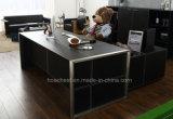 Fashion&Modern革PVC/MDFのオフィス表(V1)