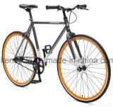 700c 최신 판매 싼 단 하나 속도 조정 기어 자전거는 Sy-Fx70012를 자전거를 탄다