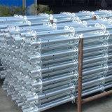 Гальванизированные леса Ringlock сбывания фабрики для стальной материальной картины или