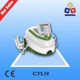 Gros traitement duel de régime de congélation Coolsculpting/système de contournement corps de Cryolipolysis