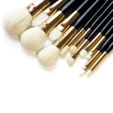 Conjunto de cepillo validado OEM sintetizado y natural del maquillaje del pelo 12PCS