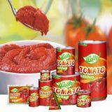 Uitstekende kwaliteit Ingeblikte Tomatenpuree 70g~4.5kg met Brix 22-24% en 28-30% of Aangepast