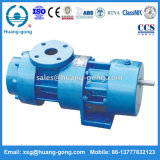 Pompe Huanggong 2GM à une seule aspiration Twin Screw Oil