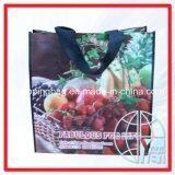 Saco de compra tecido PP (ENV-PVB052)