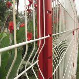 Cerca com cerco galvanizado revestido PVC
